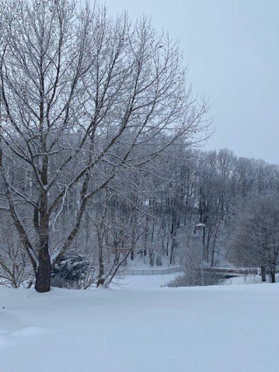 大雪1月29日